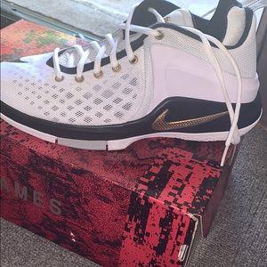 Nike Shoes - LeBron James Nike Witness Zoom